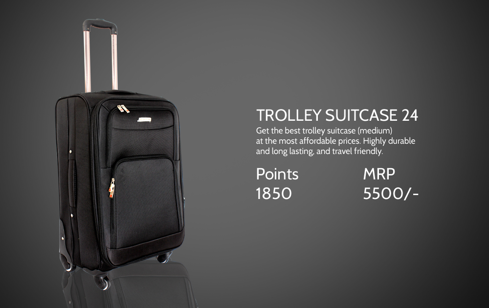 Trolley Suitcase 24